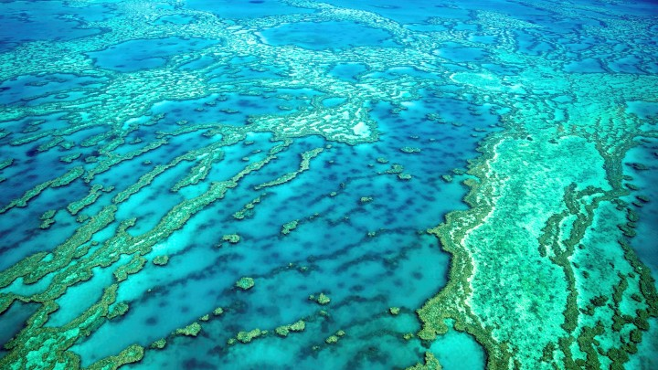 Sail the Great Barrier Reef
