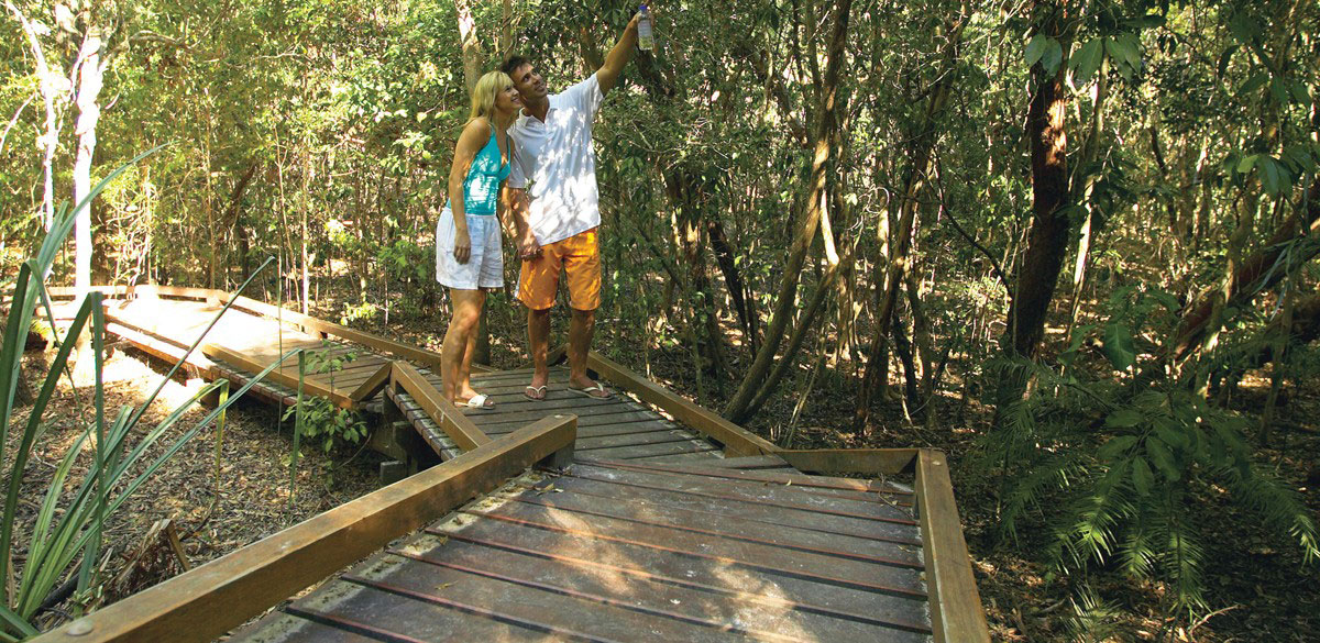 A couple on a boardwalk in a tropical Whitsunday forest