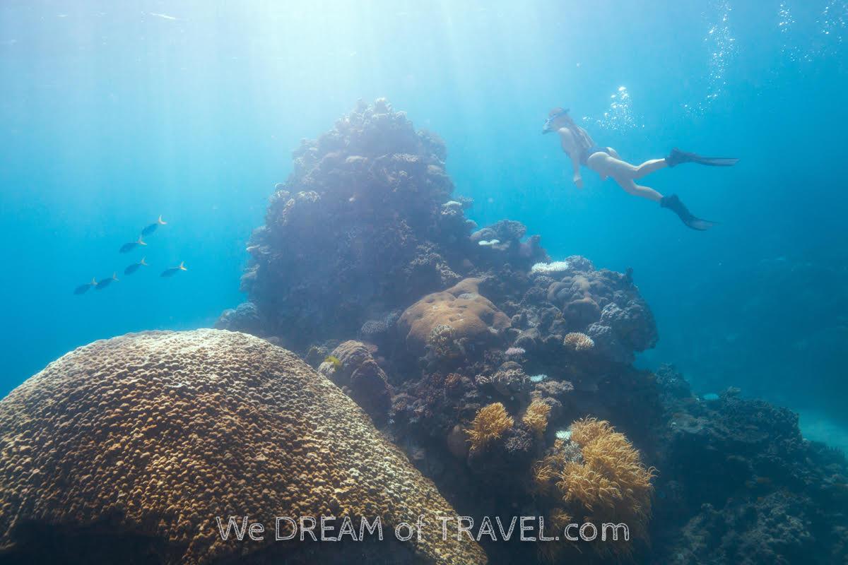 Dive Great Barrier Reef Australia Bucket List