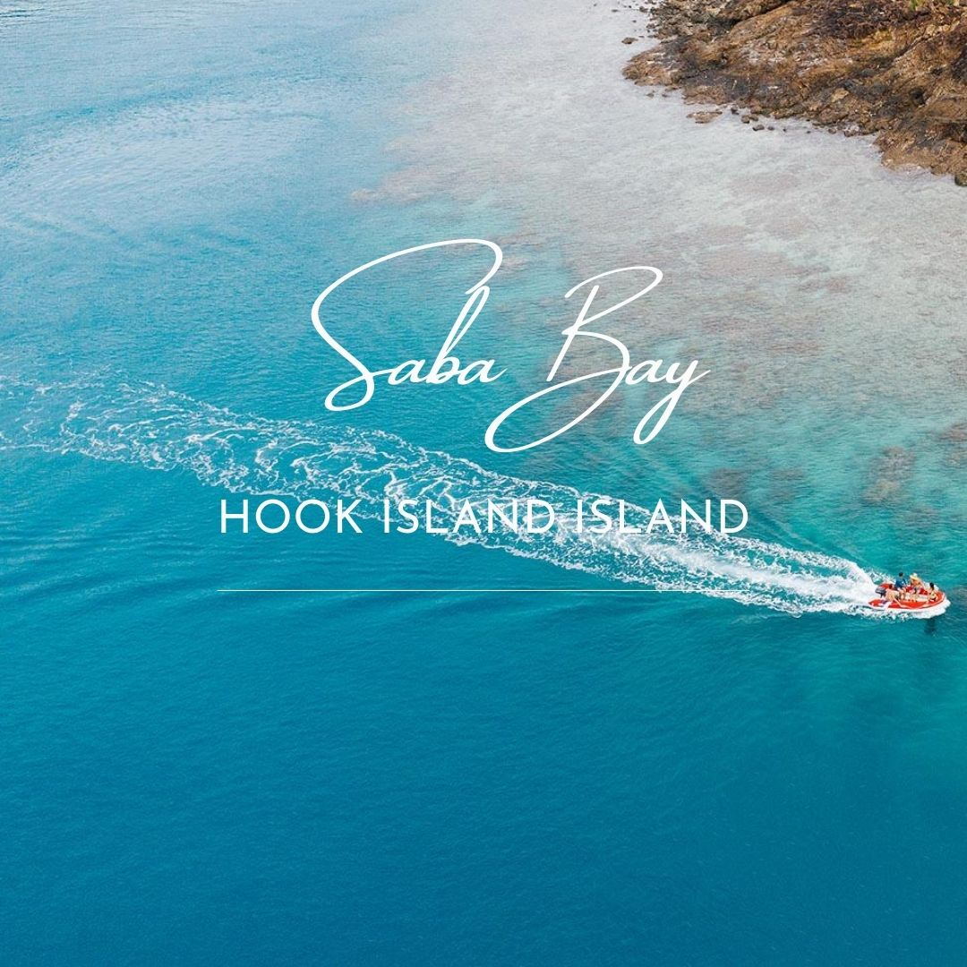 Saba Bay Cruising Whitsundays
