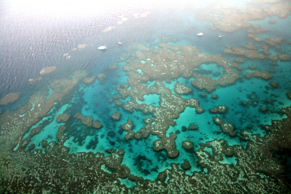 Great Barrier Reef Flotilla holiday