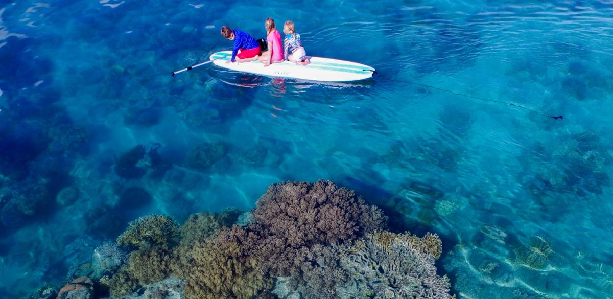 Hook Island fringing reef
