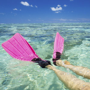 Flippered feet of a snorkeller over a reef in the Whitsundays's Chance Bay