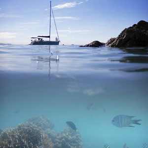Image of a yacht on the waters of Luncheon Bay with foreground of coral and reef fish below the surface