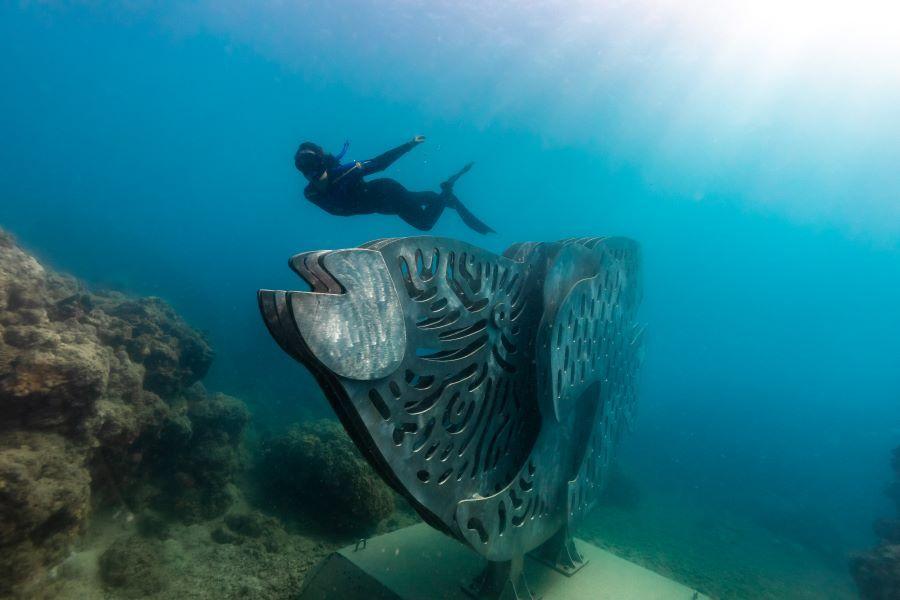 Diving whitsundays maori wrasse sculpture