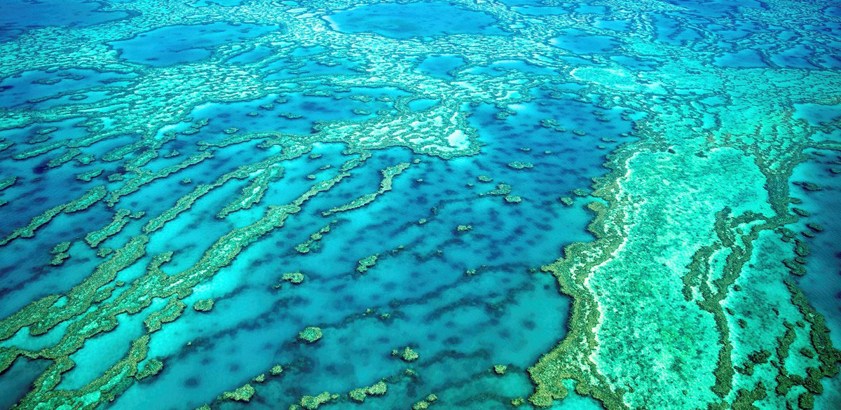 Aerial view over coral reefs and aqua waters of the Great Barrier Reef