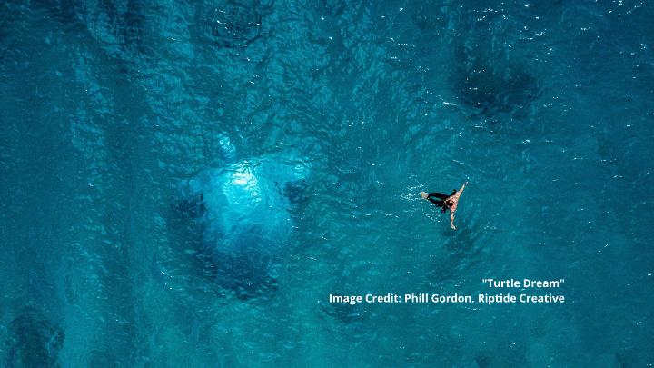 Turtle Dream - Photo Credit - Phill Gordon Riptide Creative